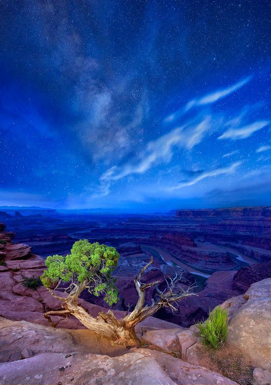 """Under Milky Way Skies"" from ""totallyfrickinawesome.com""  (Canyonlands National Park in Utah)"